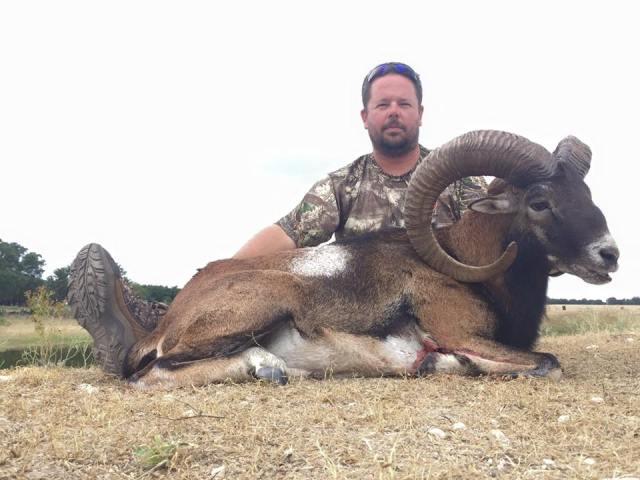 Keith G Mouflon